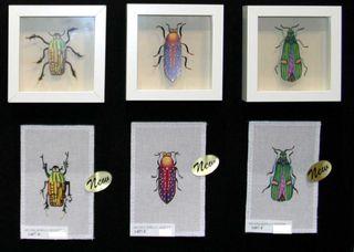 Melissa shirley beetles1